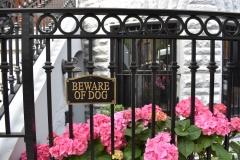 Beware-Of-Dog-Fence