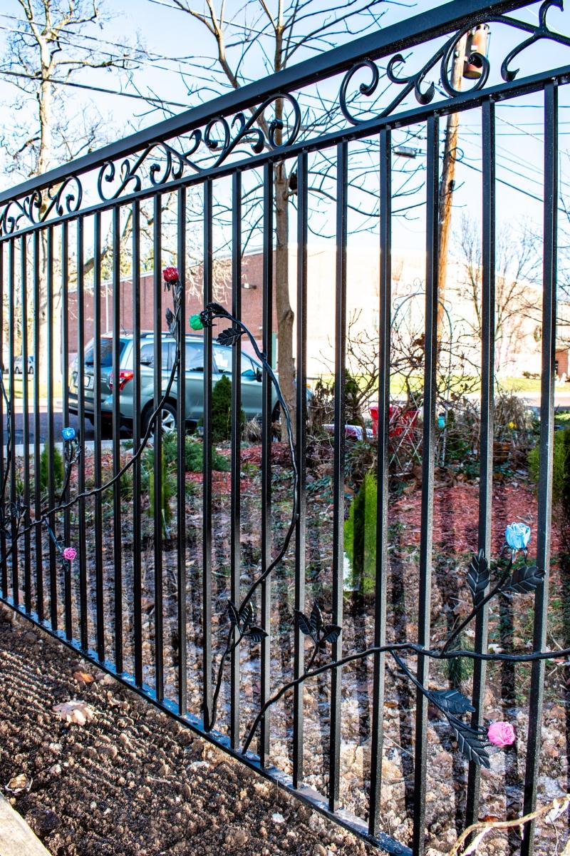 Rose-Fence2