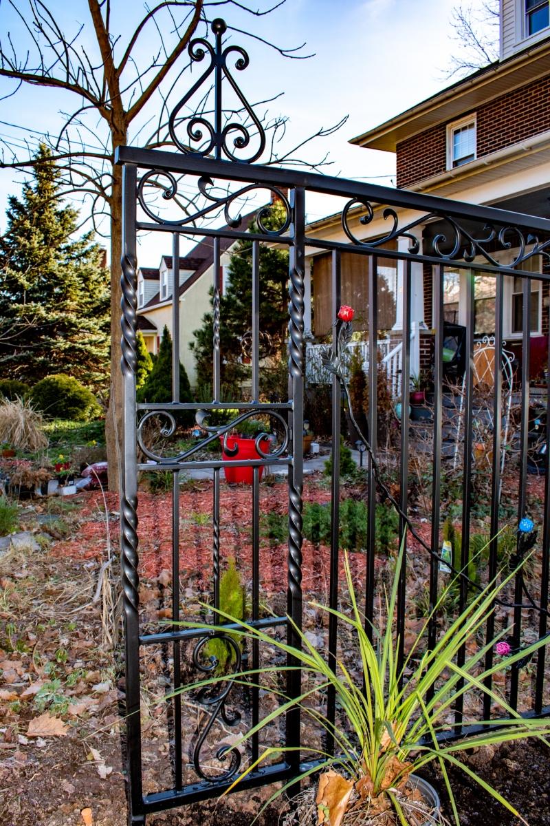 Rose-Fence3