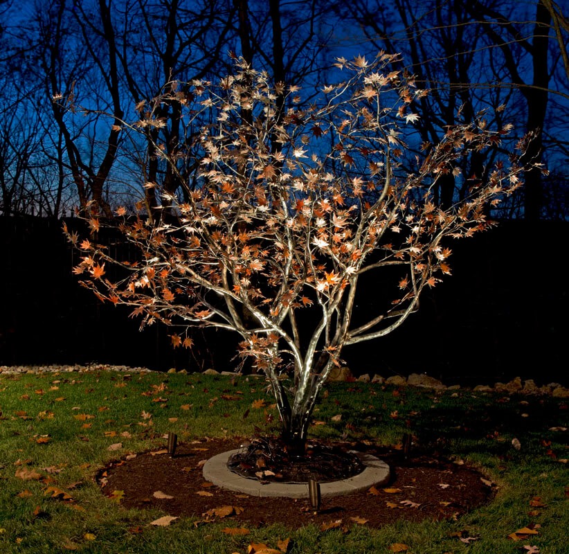 Custom Iron Japanese Maple Tree