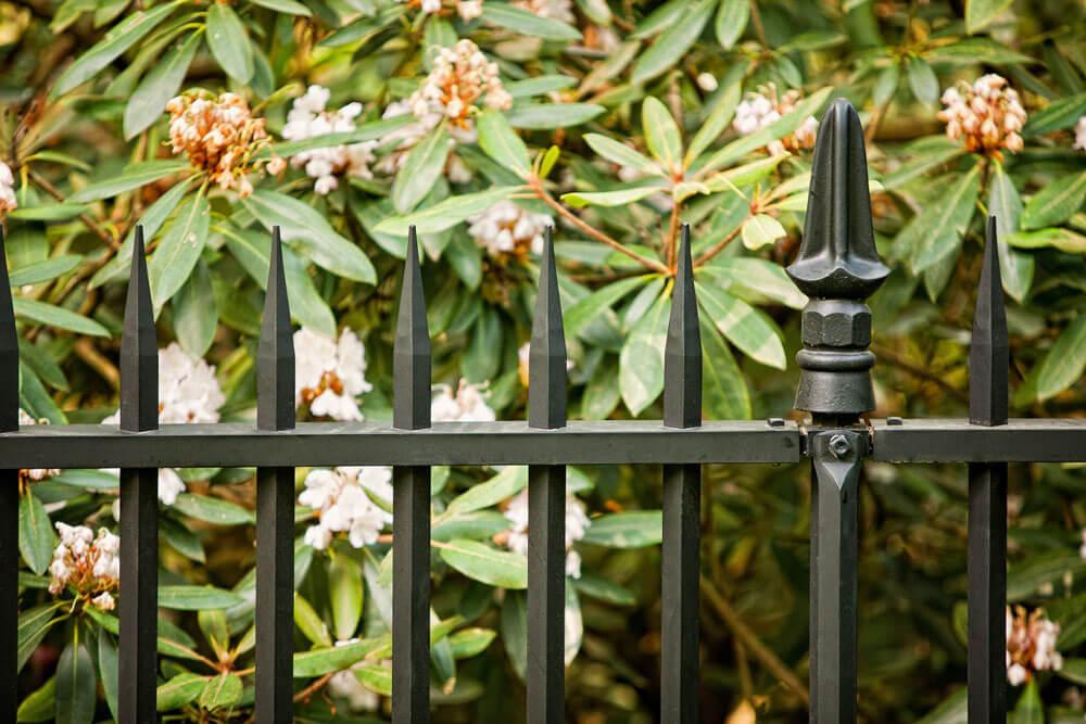 Beautiful Replication Security Fence